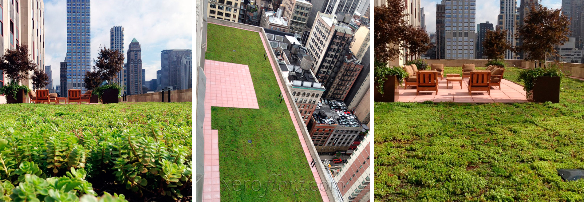 Green Roof on Empire State Building