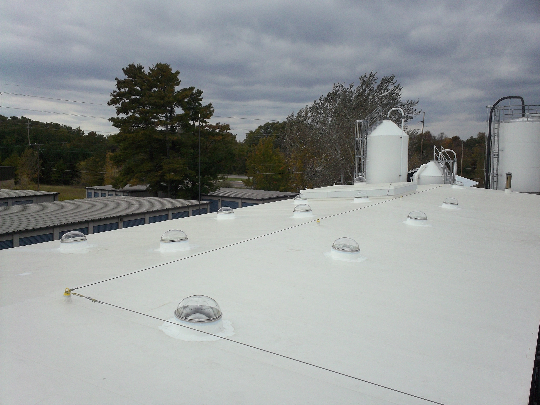 Springfield smart roof with smart light